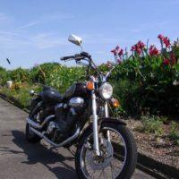 オートバイと赤い花