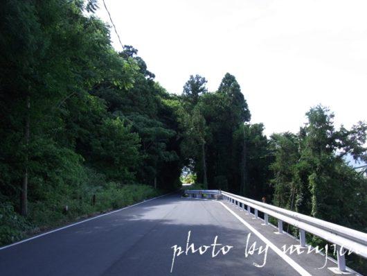 山沿いの道路