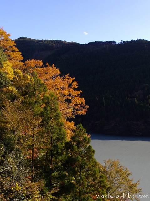 黄葉と笹間川ダム湖