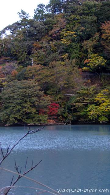 笹間川ダム湖 晩秋
