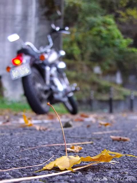 枯れ葉とオートバイ