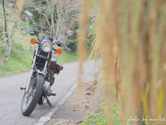 稲とバイクのある風景