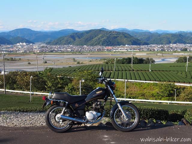 バイクと茶畑と大井川