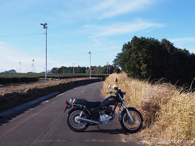 オートバイと茶畑のある道路