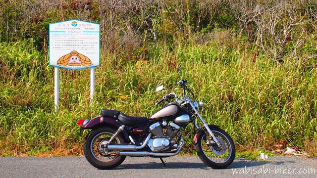 オートバイとウミガメの看板