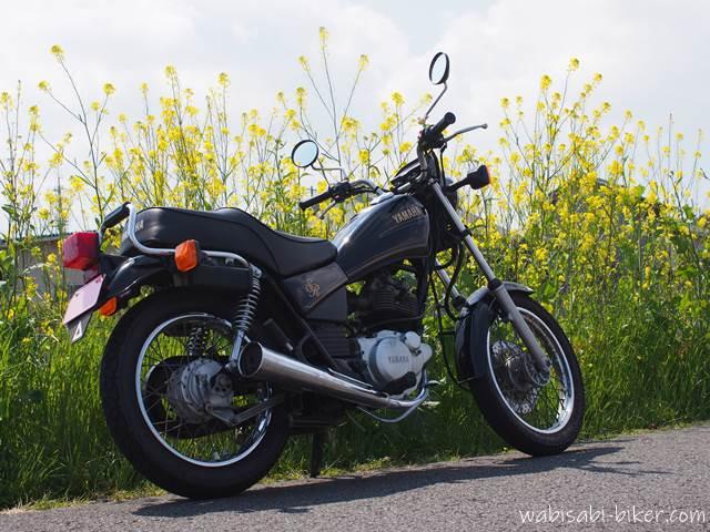 オートバイと菜の花