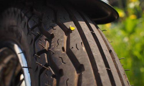 タイヤに付いた黄色い花びら