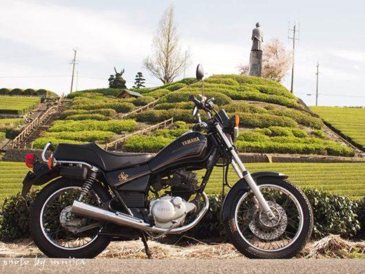 オートバイと中条景昭像公園下の茶畑