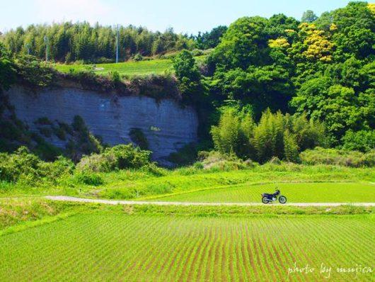 崖と水田とバイクのある風景