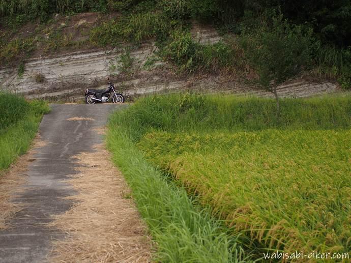 稲穂と地層とバイクのある風景