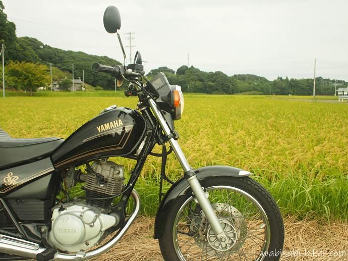 オートバイと稲穂