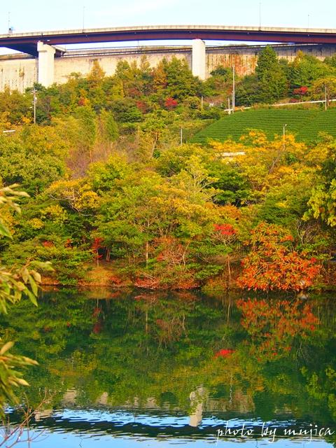 紅葉した畑無の池