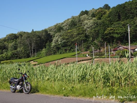 里山とSR125
