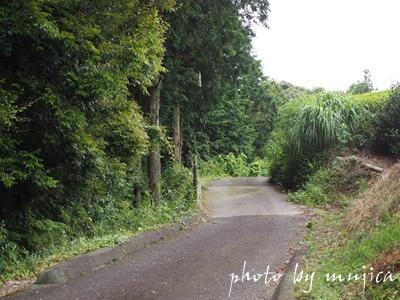 勝間田城跡への道