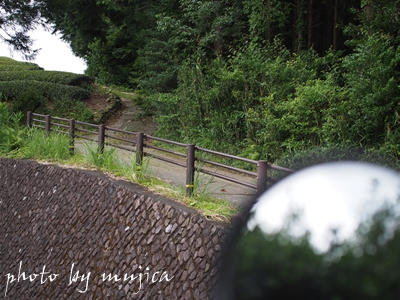 勝間田城跡途中の小道