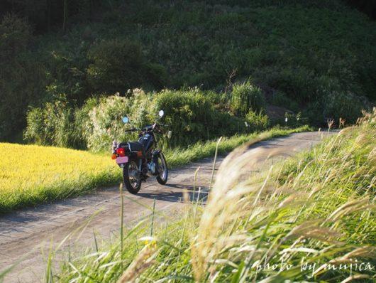 田んぼ道のSR125