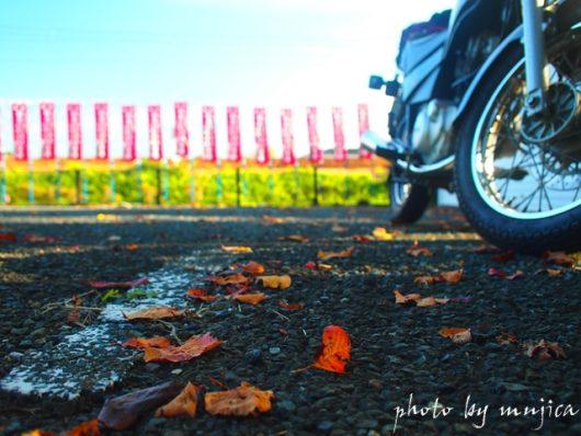 桜紅葉とSR125
