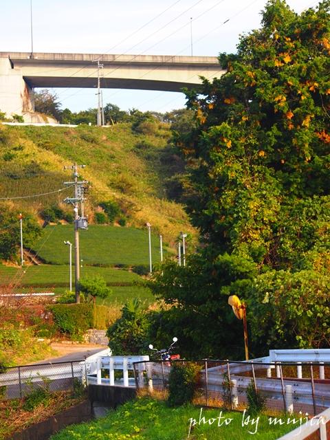 バイパス道路とバイクのある風景