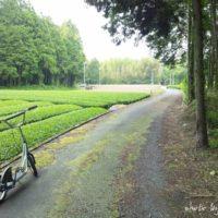茶畑とkick scooter