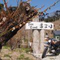 バイクで日本茶カフェ「Tea time まるは」へ行ってみた☆YAMAHA SR125