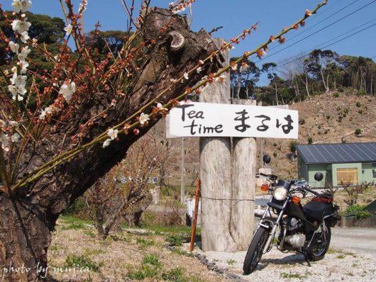 まるはの看板と梅とオートバイ