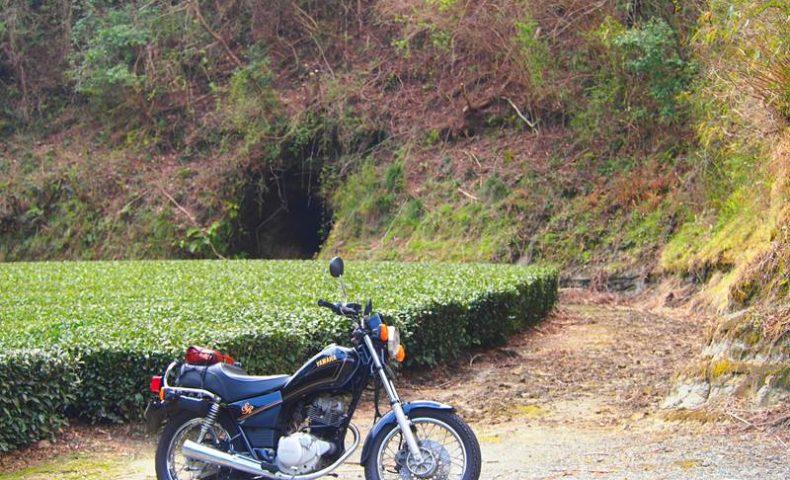 茶畑の洞穴とオートバイ