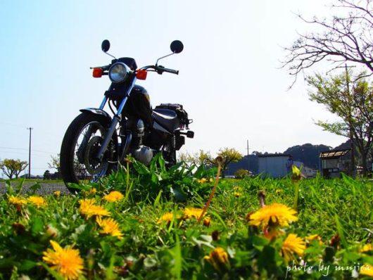 タンポポとオートバイ