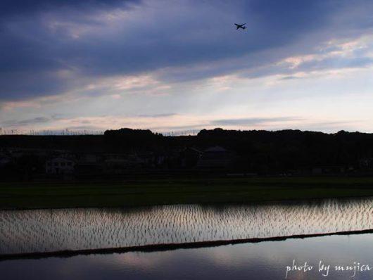水田と飛行機のある風景