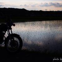 早苗田とバイクのある風景