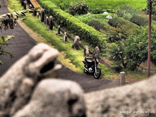 カエルとバイクのある風景