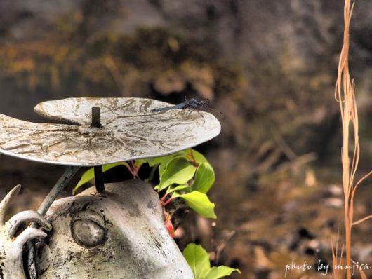 青トンボとカエルの像