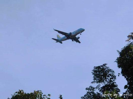 FDAの飛行機