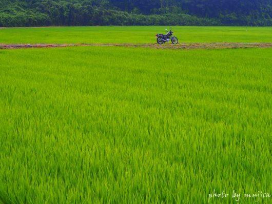 田園とバイクのある風景