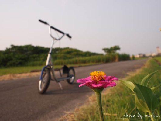 お花とキックスクーターのある風景
