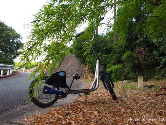 キックスクーターと竹