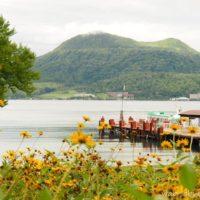 洞爺湖と黄色い花