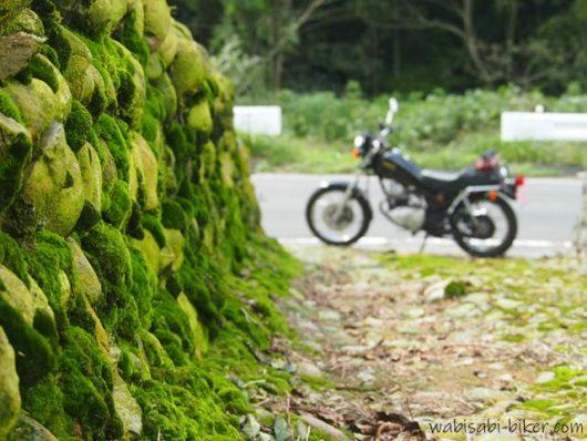 苔とバイクのある風景