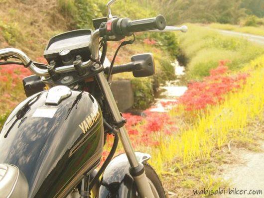 バイクと彼岸花