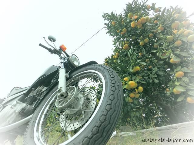 オートバイとみかん