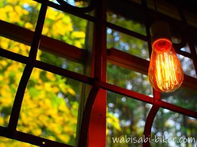 窓枠と電球と黄葉