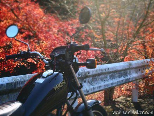 オートバイと冬紅葉