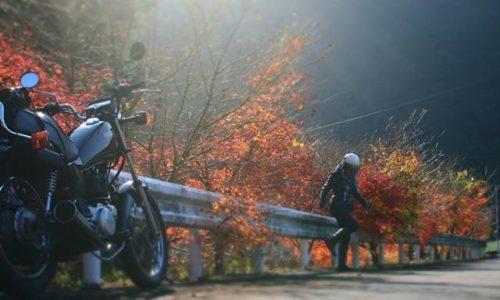 オートバイと冬紅葉で自撮り