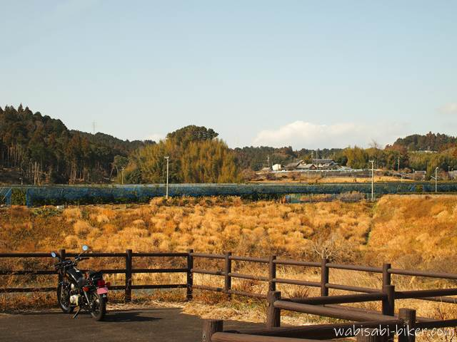 バイク写真 枯れ草とオートバイ