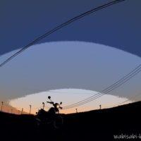 バイクと茶畑