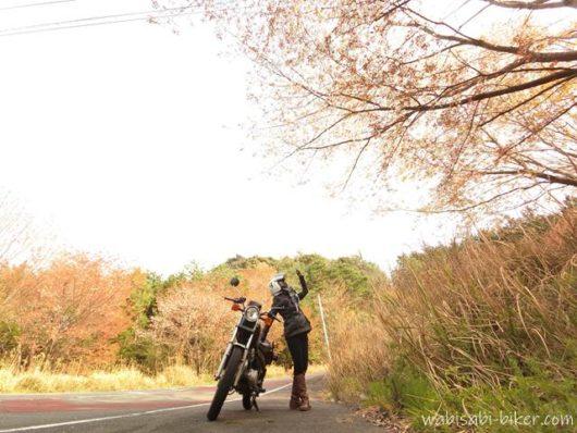 山桜とバイクと自撮り