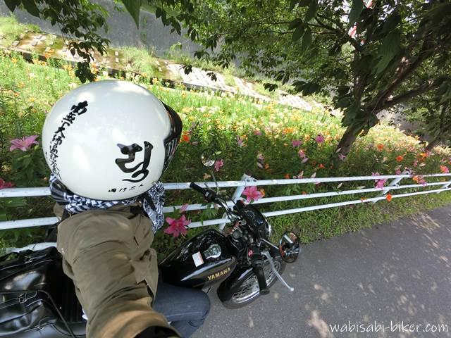 バイクで逆川沿いのユリと自撮り