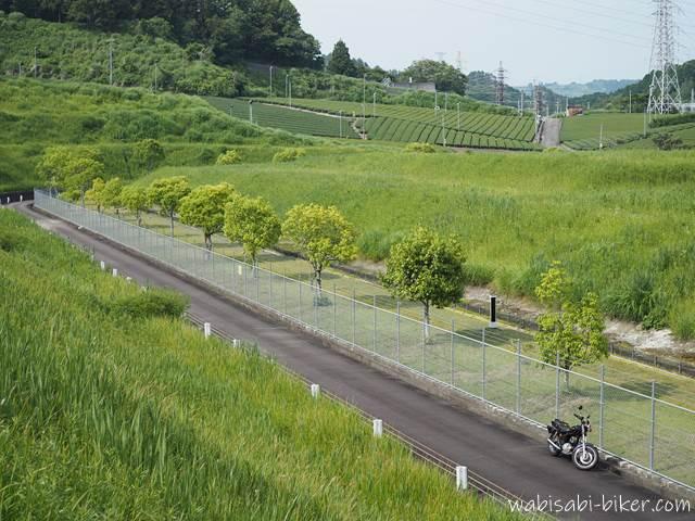 駿遠変電所近くの茶畑とバイク