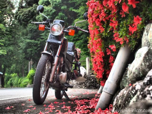 サツキとオートバイ