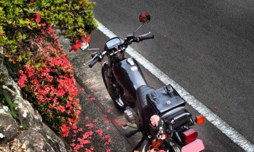 ツツジとオートバイ
