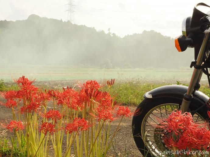 稲わら焼きの煙と彼岸花とバイク